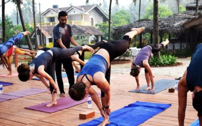 6 things to expect from yoga teacher training sessions